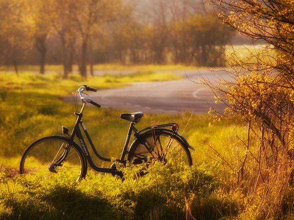 Mädchen Fahrrad in 07639 Bad Klosterlausnitz für € 199,00