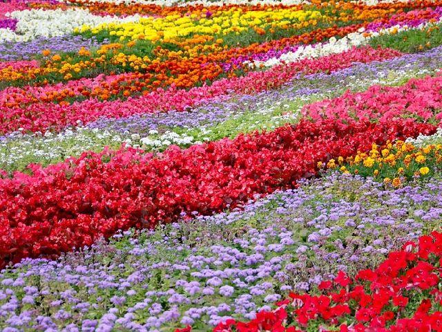 Sonnenhotel Salinengarten