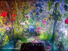 Carolas Garten - Ein Paradies auf Erden