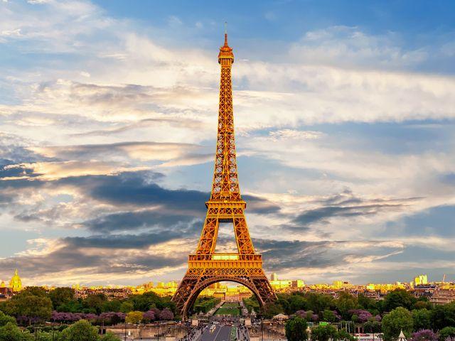 Apogia Paris