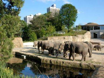 Kurzurlaub im Kölner Zoo (Cologne Zoo) 2 Tage