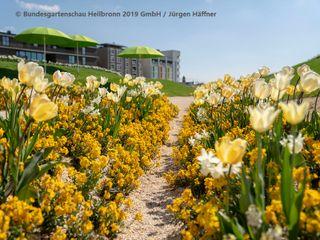 Bundesgartenschau 2019 - Atmosphärisches Erleben