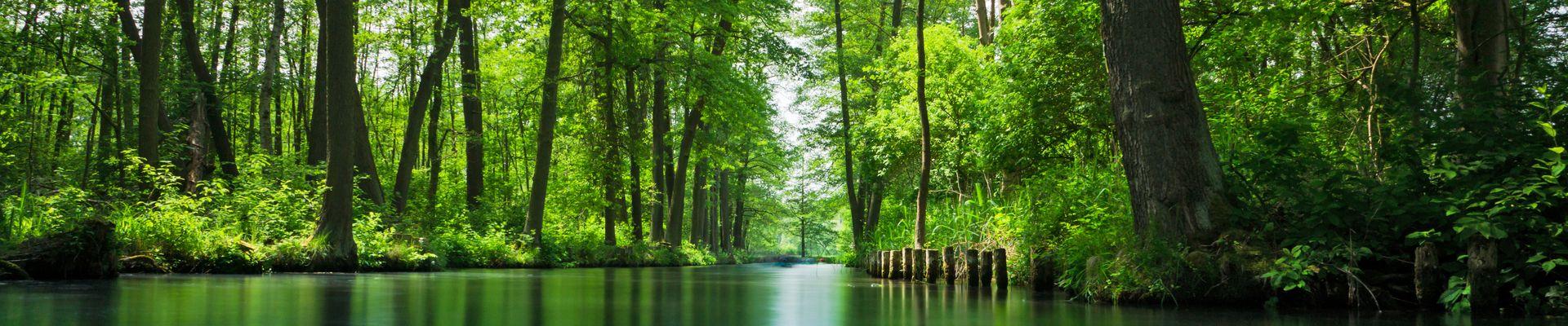 Wellness Wochenende im Spreewald