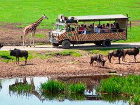 Achtung Wild! mit Serengetipark
