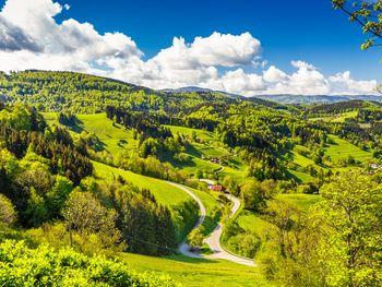 Hallo Schwarzwald!